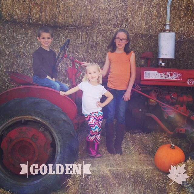 Family Storytelling, Fall Traditions, October, Memories